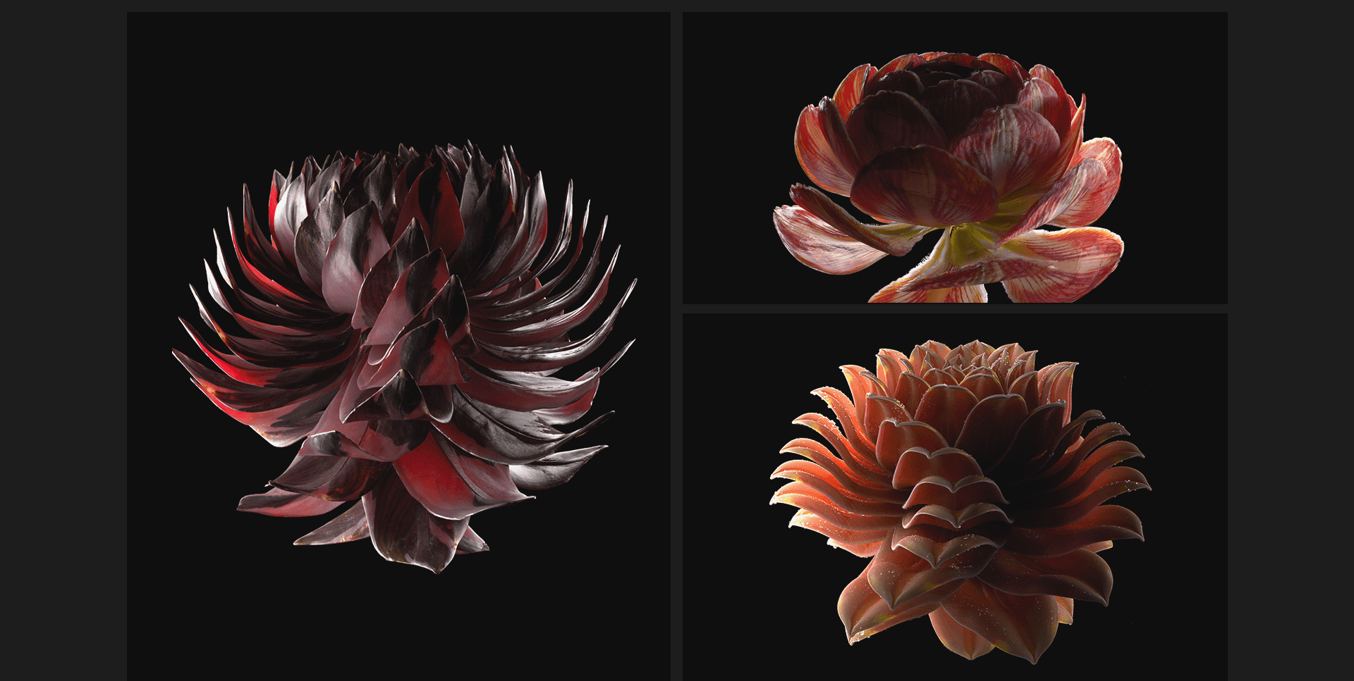flower_web_01_14